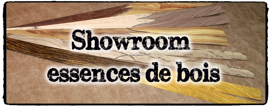 showroom essence copie PES 20170202